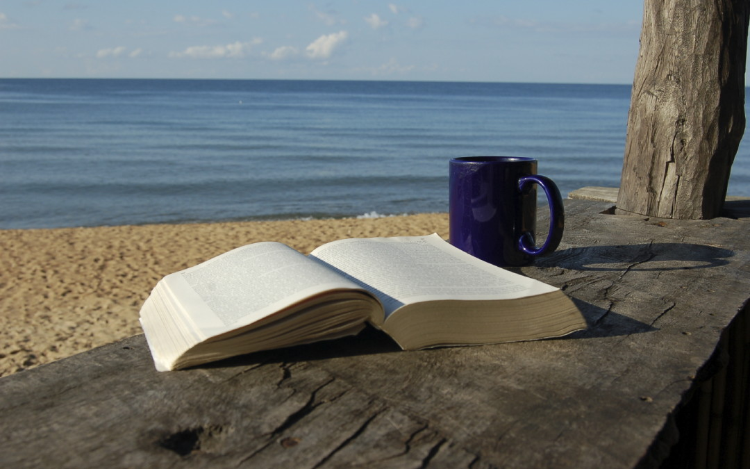 For Memorial Day Weekend: Star-Telegram's Best Beach Reads